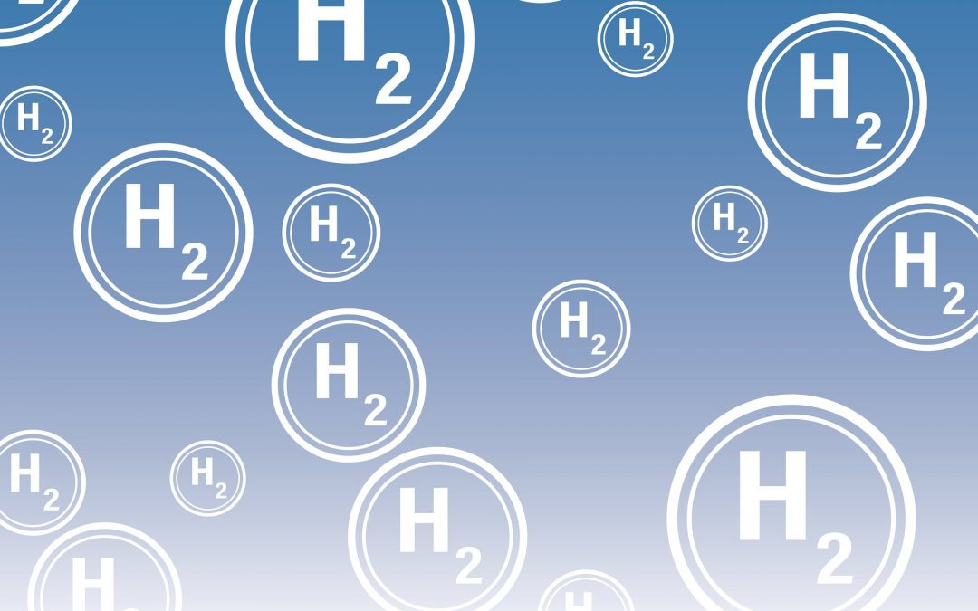 Positionspapier Wasserstoffwirtschaft
